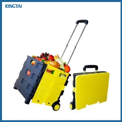 Plastic Foldable Trolley